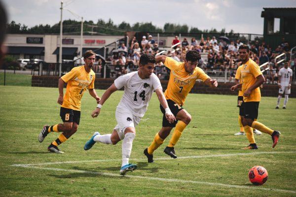 main sepak bola