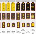 Urutan Tingkatan Pangkat Polisi Indonesia